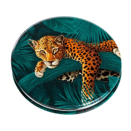 Compact Mirror Cats - Assorted