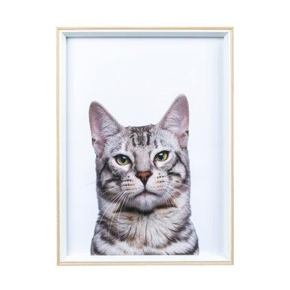 Quirky Cat Print