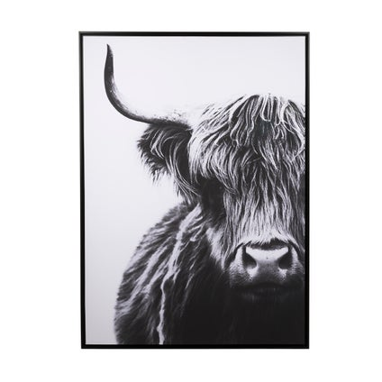 Highland Cow Printed Artwork
