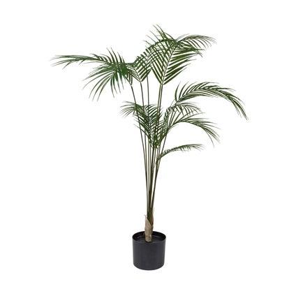 Kwai Palm Tree- 110cm