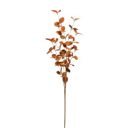 Autumn Branch - Coffee