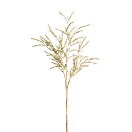 Rice Stem - Cream