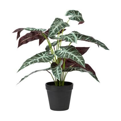 Alocasia Faux Plant - Green Red